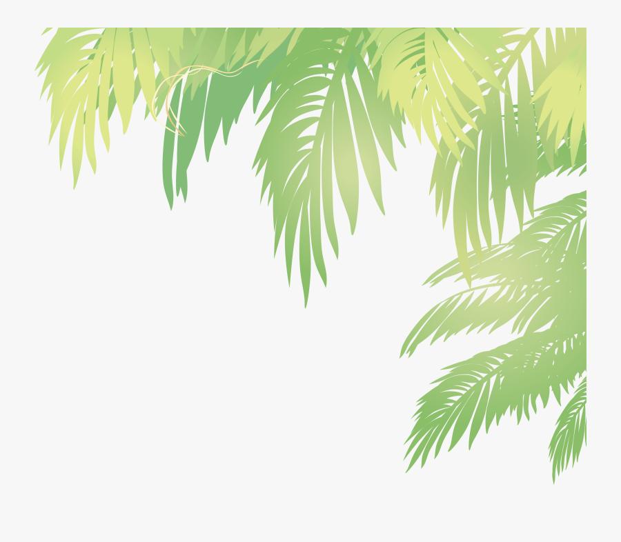 Palm Tree Leaf Vector - Coconut Leaf Vector Png, Transparent Clipart
