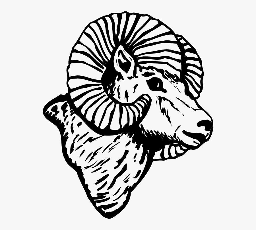 Colorado State University Black And White, Transparent Clipart