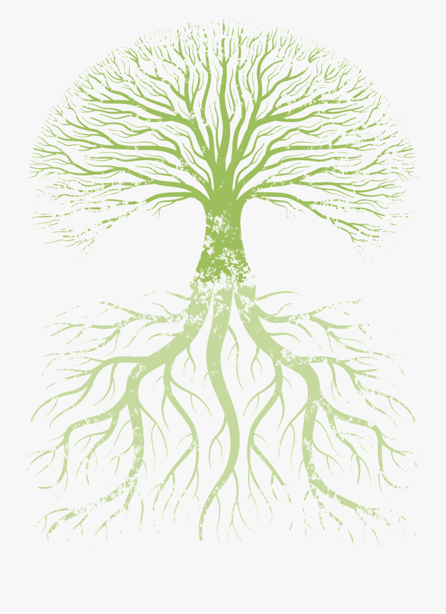Family Tree Root Tree Of Life - True Knowledge Is Knowing The Extent Of One's Ignorance, Transparent Clipart