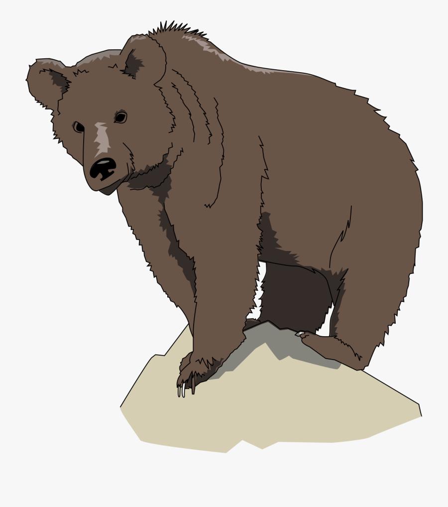 Animal - Bear Standing On Rock, Transparent Clipart