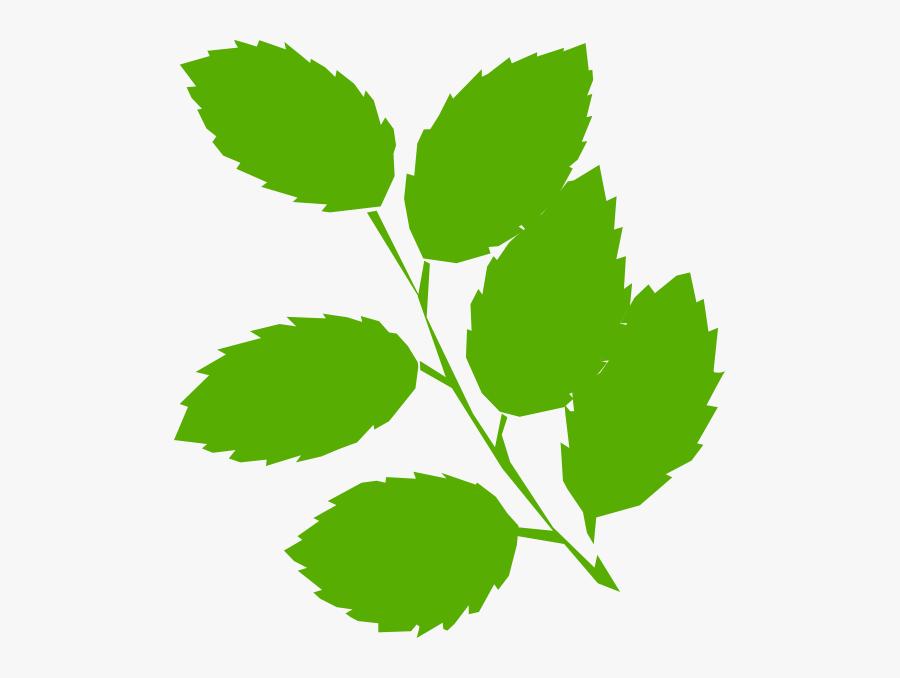 Leaves Svg Clip Arts - Green Leaves Clip Art, Transparent Clipart