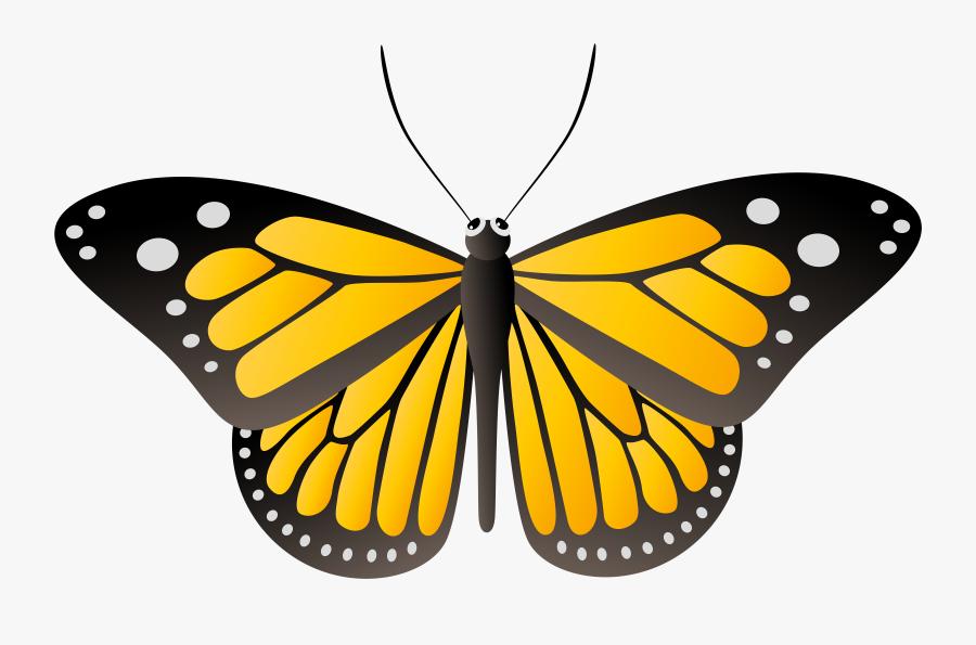 Yellow Butterfly Clip Art