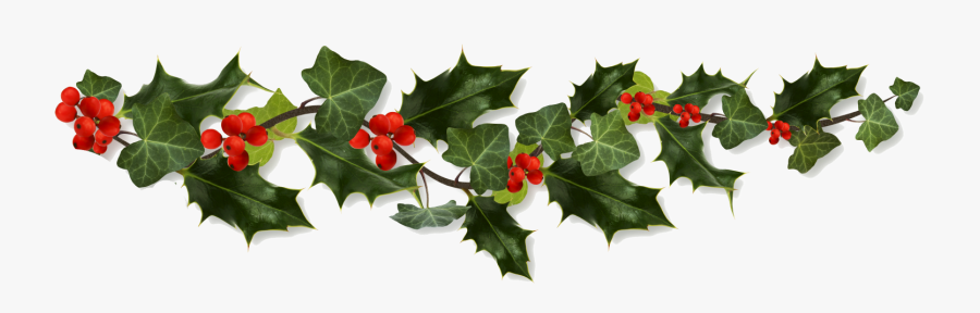 Holly Border Png Clip Art Transparent Stock - Border Holly Png, Transparent Clipart