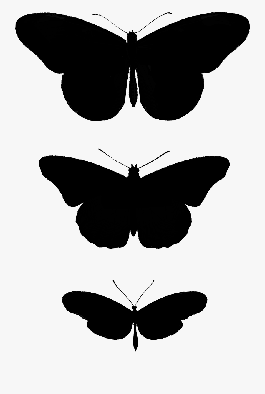 2267 Butterfly Silhouettes Free Vintage Clip Art➢ Download - Brush-footed Butterfly, Transparent Clipart