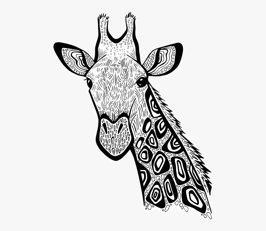 Giraffe Head Giraffe Zentangle, Transparent Clipart
