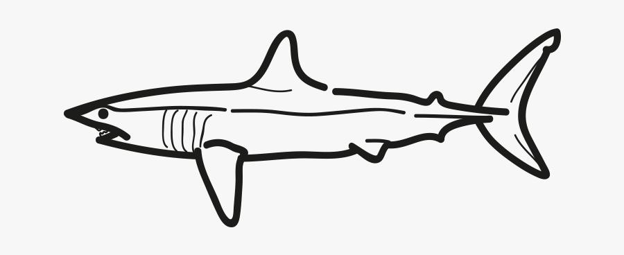 Marrajo Isurus Oxyrinchus Frioantartic - Mako Shark Clip Art, Transparent Clipart