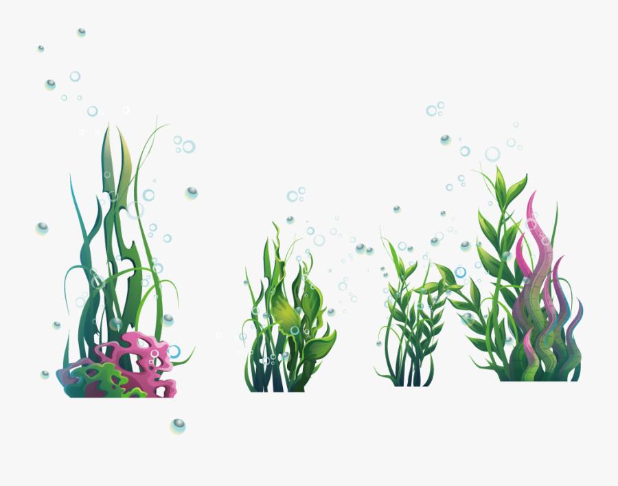 Algae Seaweed Ocean Plantas Algas Marinas Png Plantas De Mar Png