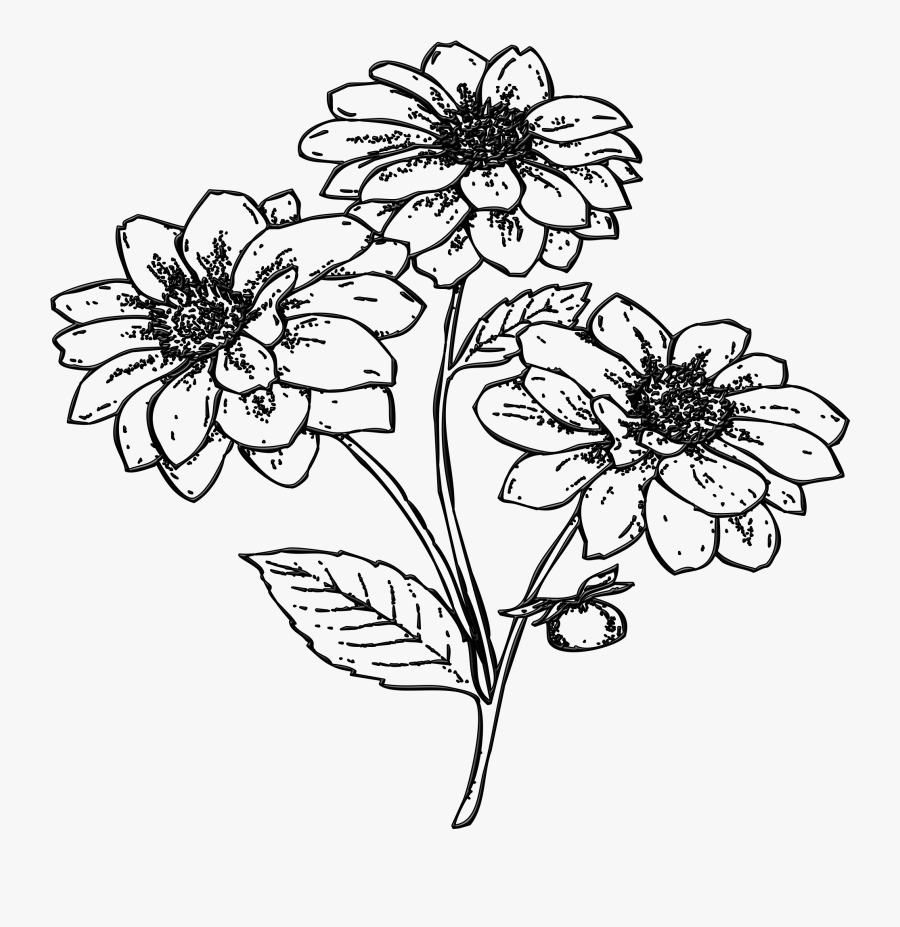 Flowers Garden Plant Free Picture - Gambar Ilustrasi Flora Bunga, Transparent Clipart