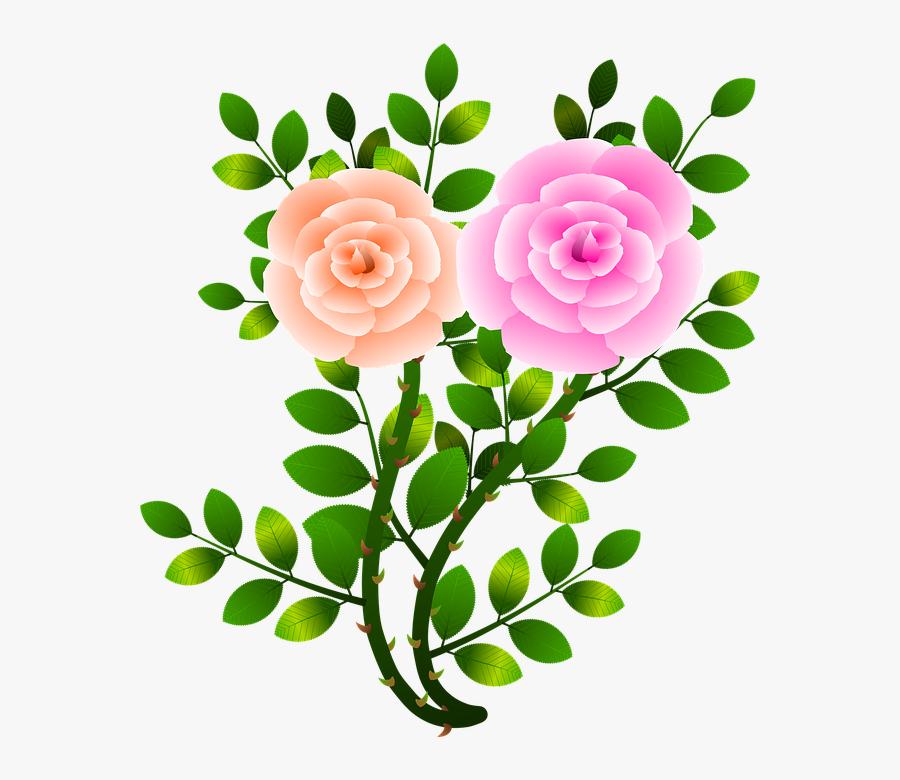 Roses, Flowers, Floral, Flowery, Branch, Plants, Garden - Rama De Rosa Png, Transparent Clipart