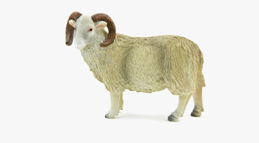 Transparent Ram Animal Png - Sheep Ram, Transparent Clipart