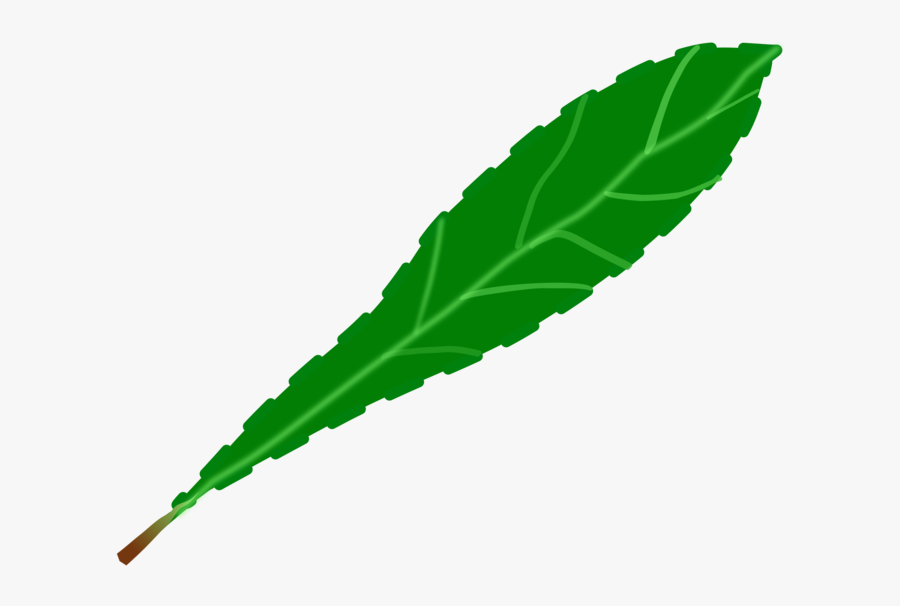 Drawing Leaf Computer Icons Green Watercolor Painting - Portable Network Graphics, Transparent Clipart