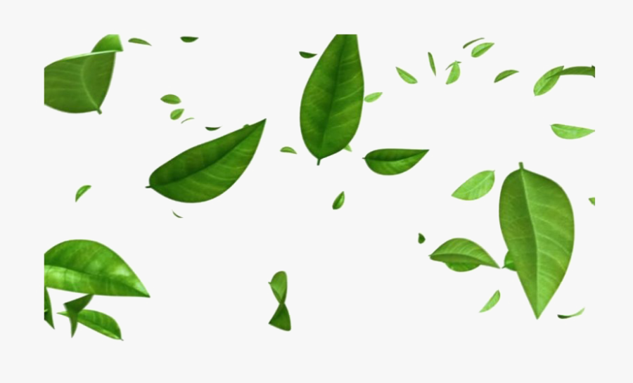 Green Leaves Png Free Image - Transparent Falling Green Leaves Png, Transparent Clipart