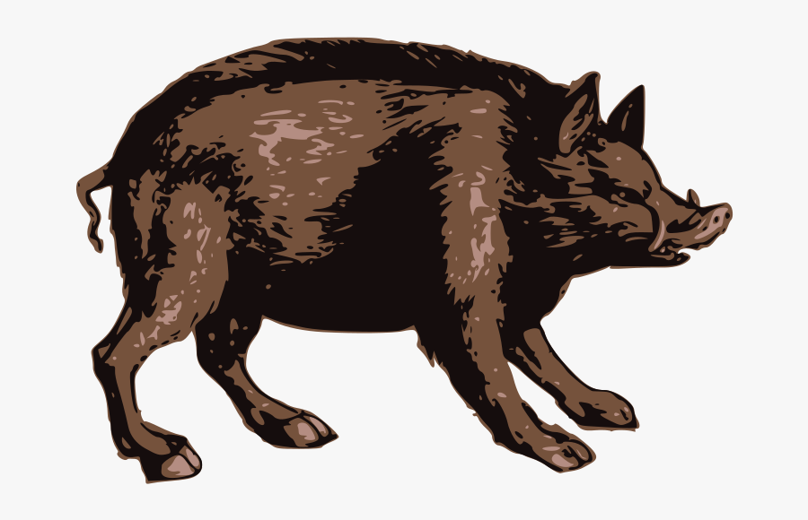 Brown Boar - Punxsutawney Phil, Transparent Clipart